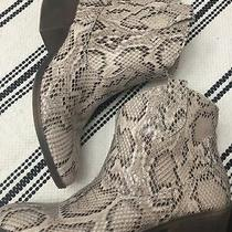 Rampage Snake Skin Bootie Womans Size 7.5 Euc 2 Inch Heel  Euc Fun Style Photo