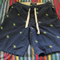 (Rare) Abercrombie & Fitch Upper Hudson Short (S)  Photo