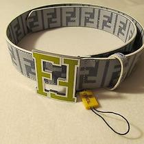 Rare Fendi College Grey Zucchino Spalmati Logo Buckle Beltsize 95/38new Photo