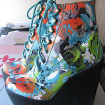 Rare Nib Jeffrey Campbell Floral Red Green Blue Tardy Hook & Eye Lace Up  6.5 Photo