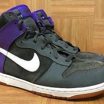 Rare Nike Dunk as Dark Wofl Gray Varsity Purple Gum Soles Sz 11 517562-062 Photo