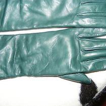 Rare Unique Authentic Donna Karan Dkny Cashemere Lambskin  Opera  High Gloves  Photo