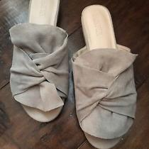 Reaction Kenneth Cole Gray Suede Slide Mule With Small Heel 8 Medium Photo