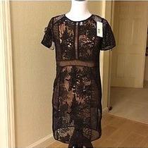 Rebecca Taylor  Black Lace Dress Photo