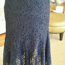 Rebecca Taylor Lace Fluted Skirt Nwot Navy Blue Size 0 375 Photo