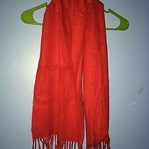 Red Christian Dior Scarf Photo