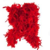 Red Feather Boa by Fun Express Photo