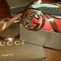 Red Gucci Belt 120 Cm Photo