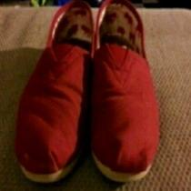 Red Toms Photo