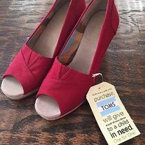 Red Toms Size 7 Photo