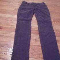 Rich & Skinny Jegging Deep Tuscan Color Jeans Sz 25 Photo