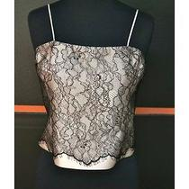 Rickie Freeman Teri Jon Sz 16 Blush/black Mesh Spaghetti Strap Corset Zip 8550 Photo