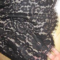 Robert Rodriguez Black Lace Strapless Princee Beautiful Wedding Party Dress 4nwt Photo