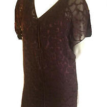 Robert Rodriguez Dress Size 4 Burgundy Photo