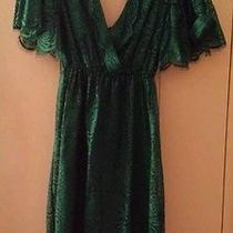 Robert Rodriguez Lace Dress Beautiful Photo