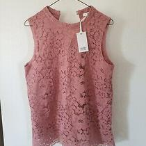 Rose & Olive Womens Blush Pink Floral Lace Sleeveless Blouse Top Size Large Photo