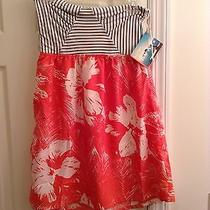 Roxy Summer Dress Photo