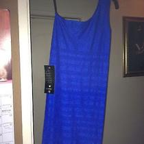 Royal Blue Bebe Dress Photo