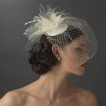 Russian Bridal Bird Cage Veil Hat With Swarovski Crystal & Feather Accent Ivory  Photo