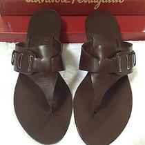 Salvatore Ferragamo Brown Leather Sandals Size 7 Slides W/ Dust Cover Bag & Box Photo