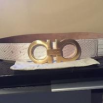 Salvatore Ferragamo Python Belt Original Price (795) Photo