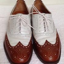 Salvatore Ferragamo 'Sondrio' Wingtip Dress Shoes Us 8d Men (Brown/white) Photo