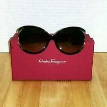 Salvatore Ferragamo Sunglasses (Brown) Photo