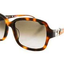 Salvatore Ferragamo Sunglasses Sf704sr 214 Tortoise 56 18 120 Photo
