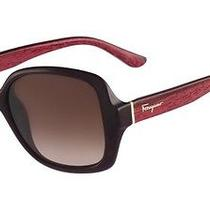 Salvatore Ferragamo Sunglasses Sf715s 507 Plum Cyclamen Wood 56mm Photo