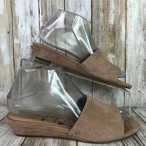 Sam Edelman 6.5m Slide Sandal Taupe Brown Suede Womens Liliana Wedge  Photo