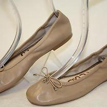 Sam Edelman Mismatch 7 W / M Felicia Womens New Ballet Flats Shoes Of Photo
