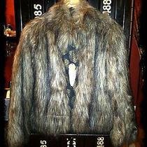 Sanctuary Faux-Fur Coat  Nwt  Retail 698 Photo