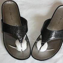 Sandals  Bandolino Piano Black    Size 6.5 M New Nwt Photo
