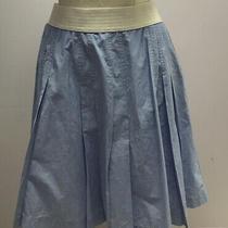Sara Campbell Blue Skirt Photo