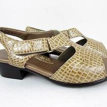 Sas Suntimer Beige Croc Leather Tri-Pad Comfort Sandals Woman's 7.5 M Photo