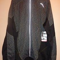 Saucony Jacket Size Large. Photo