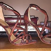 Schutz Snake Print Sandals Photo