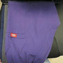 Scrubs - Xlp - Extra Large Petite - Pants - Purple - Used Photo