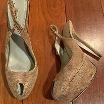 Sergio Rossi Brown Suede/leather Pumps Size 38 Photo