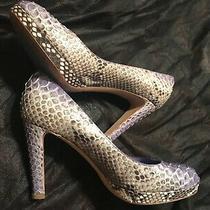 Sergio Rossi Italy Python Snake Heel Pumps Women's Shoes Size 7 Platform  Beige  Photo