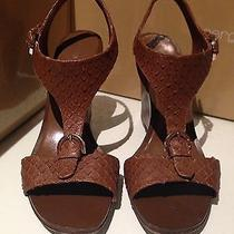 Sergio Rossi Pelle Broadway Cigar Brown Tone Wedge Shoes Size 7.5 Retail 640 Photo
