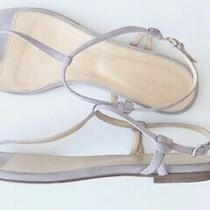Sergio Rossi Skinny Strap Suede T-Strap Thong Sandals Royal Lilac Blush 40 9 9.5 Photo