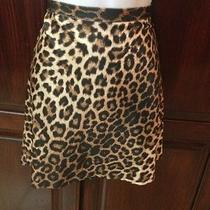 Sexy  Bebe Skirt Leopard Animal Print Sz 10 Mini Clubwear San Francisco Photo