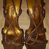 Sexy Cole Haan Brown Gold Animal Print Leather Sandals Ankle Strap 8b Shoes Photo