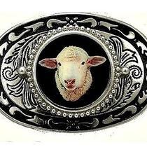 Sheep Ram Lamb Ffa 4h Ram Country Western Farm Belt Buckle Usa Photo
