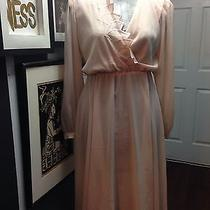 Sheer Blush Pink Leaf Vintage Dress W/ Back Sass Photo