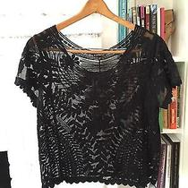 Sheer Lace Black Express Short-Sleeved Top Photo