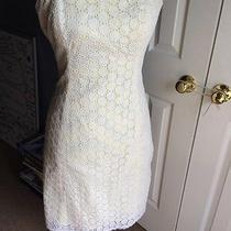 Shoshanna Dress Beautiful Photo