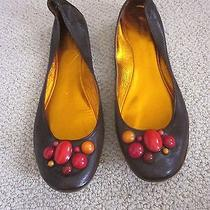 Sigerson Morrison Brown Leather Stone Embellished Ballet Flats- Sz 9b Photo