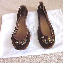 Sigerson Morrison Brown Velvet Stone Embellished Ballet Flats- Sz 9b Photo